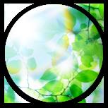 関係企業グリーン化プログラム